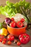 Vegetables tomato pepper avocado onion cauliflower lettuce Royalty Free Stock Images