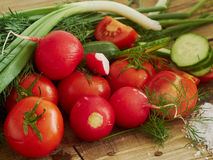 Vegetables. Tomatoes cucumber green onion on the board Stock Photography