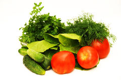 Vegetables, tomatoes, cucumbers, salad, parsley, f. Ennel on a white background Stock Photos