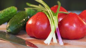 Vegetables, tomatoes and cucumbers, on top falls onions stock video footage