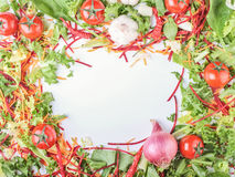 Vegetables, tomatoes, onion, salad, pepper surrounded white blan Royalty Free Stock Images