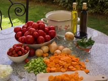 Vegetables, tomatoes, onions, chopped celery, carrot and basil leaves on the table with bottles of olive oil and balsamico vinegar. Preserving jars, cooking royalty free stock images