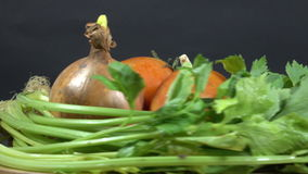 Vegetables tomatoes, onions, peppers, garlic stock video footage