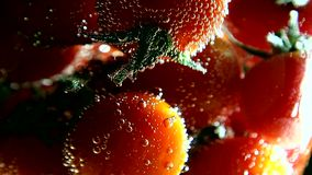 Vegetables. Tomatoes swims in water with bubbles stock video