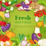 Vegetables top view frame. Farmers market menu design. Organic food poster. Vintage hand drawn sketch vector Royalty Free Stock Image