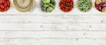 Vegetables top view on kitchen white large table, web banner Royalty Free Stock Images