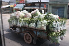 Vegetables transportation Royalty Free Stock Images