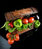 Vegetables, treasure of earth Royalty Free Stock Photos
