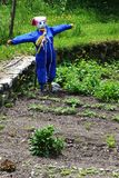 Scarecrow in French vegetable garden, Isere Region. While the vegetables are trying to grow a scarecrow has to prevent birds are eating and destroying the plants stock image