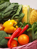 Vegetables. A variety of vegetables in a basket Stock Images