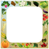 Vegetables vector background with place for text, healthy food t Stock Images