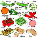 Vegetables vector Stock Photo