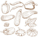Vegetables 2 Royalty Free Stock Photography