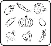 Vegetables vector hand drawn Stock Photos