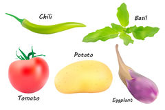 Vegetables vector set Royalty Free Stock Photos