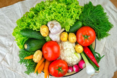 Vegetables, vegetable arrangement, a bowl with vegetables. Royalty Free Stock Image
