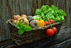 Vegetables, Vegetable Basket Stock Images