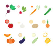 Vegetables and vegetable slices. Vegetables and slices of vegetables. Vector set Royalty Free Stock Photos