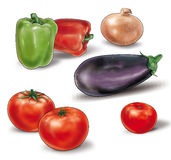 Vegetables on white. Vegetables for vegetable stew. Clip art for cooking a stew. Beautiful ripe three tomatoes, eggplant one, two bell peppers, one onion, on a vector illustration