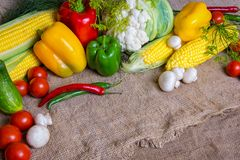 Vegetables, vegetables on the table. corn, cauliflower, tomatoes, champignons, chili peppers Royalty Free Stock Images