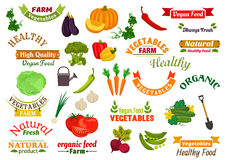 Vegetables vegetarian emblems, ribbons set. Fresh natural farm organic vegetables and greens pumpkin, carrot, pepper, dill, peas, radish, beet, cabbage Stock Images