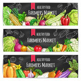 Vegetables. Vegetarian food vector banners. Veggies of farmer market. Vegetarian healthy food banners set. Chalk sketch vegetable pumpkin and cabbage, onion and Royalty Free Stock Photography