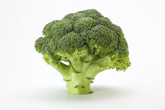 Vegetables. A view of  Broccoli on an off white background Royalty Free Stock Photography