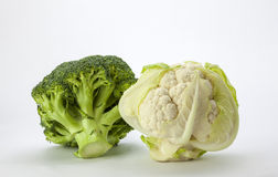 Vegetables. A view of Cauliflower and Broccoli on an off white background Royalty Free Stock Image