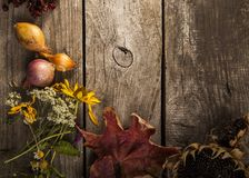 Vegetables on vintage wood background. flat lay composition, Aut. Umn fall Stock Image