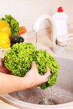 Vegetables washing in a kitchen Stock Image