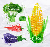Vegetables watercolor corn, broccoli, chili,. Vegetables set drawn watercolor blots and stains with a spray corn, broccoli, chili, eggplant Royalty Free Stock Images