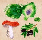 Vegetables watercolor rotkappe, artichokes, black stock illustration