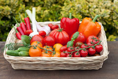 Vegetables from the weekly market Royalty Free Stock Photos