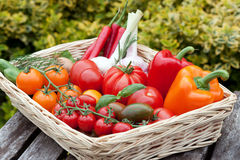 Vegetables from the weekly market Royalty Free Stock Images