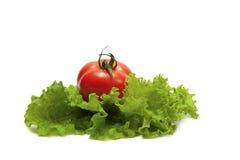 Vegetables on white Royalty Free Stock Photos
