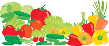 Vegetables on a white background Stock Images