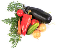 Vegetables on white. royalty free stock image