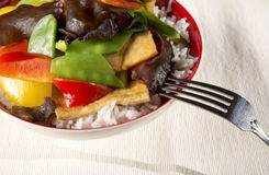 Vegetables and white rice Royalty Free Stock Images