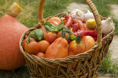 Vegetables in a wicker basket Stock Photos