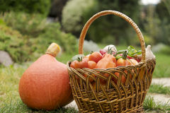 Vegetables in a wicker basket Stock Images