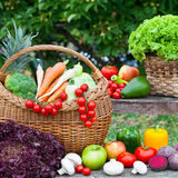 Vegetables in wicker basket Royalty Free Stock Photos