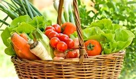 Vegetables in wicker basket Royalty Free Stock Image