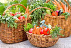 Vegetables in wicker baskets Royalty Free Stock Photos
