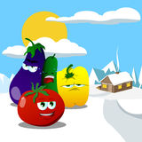 Vegetables in the winter mountains Stock Images