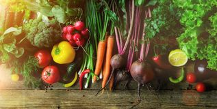 Vegetables on wooden background. Bio healthy organic food, herbs and spices. Raw and vegetarian concept. Ingredients royalty free stock images