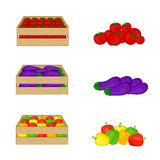Vegetables in wooden boxes isolated on white background. Tomatoes, eggplant, bell peppers. Stock Image