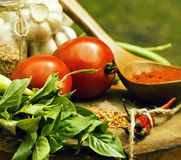 Vegetables on wooden kitchen with spicies, tomato, chilli, green Royalty Free Stock Image