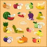VegetablesIconElement Arkivbild