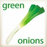 vegetablesisolated的绿色onions.fresh,宏指令,自然, 免版税库存图片