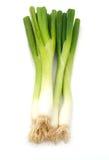 Vegetablesisolated grön onions Fotografering för Bildbyråer